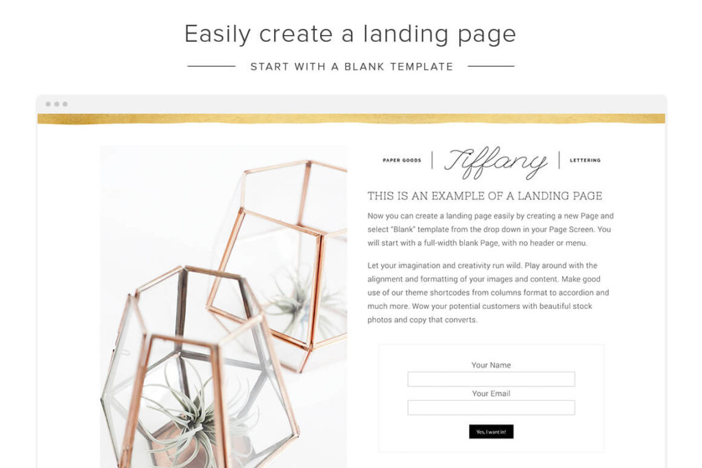 online shop owners theme